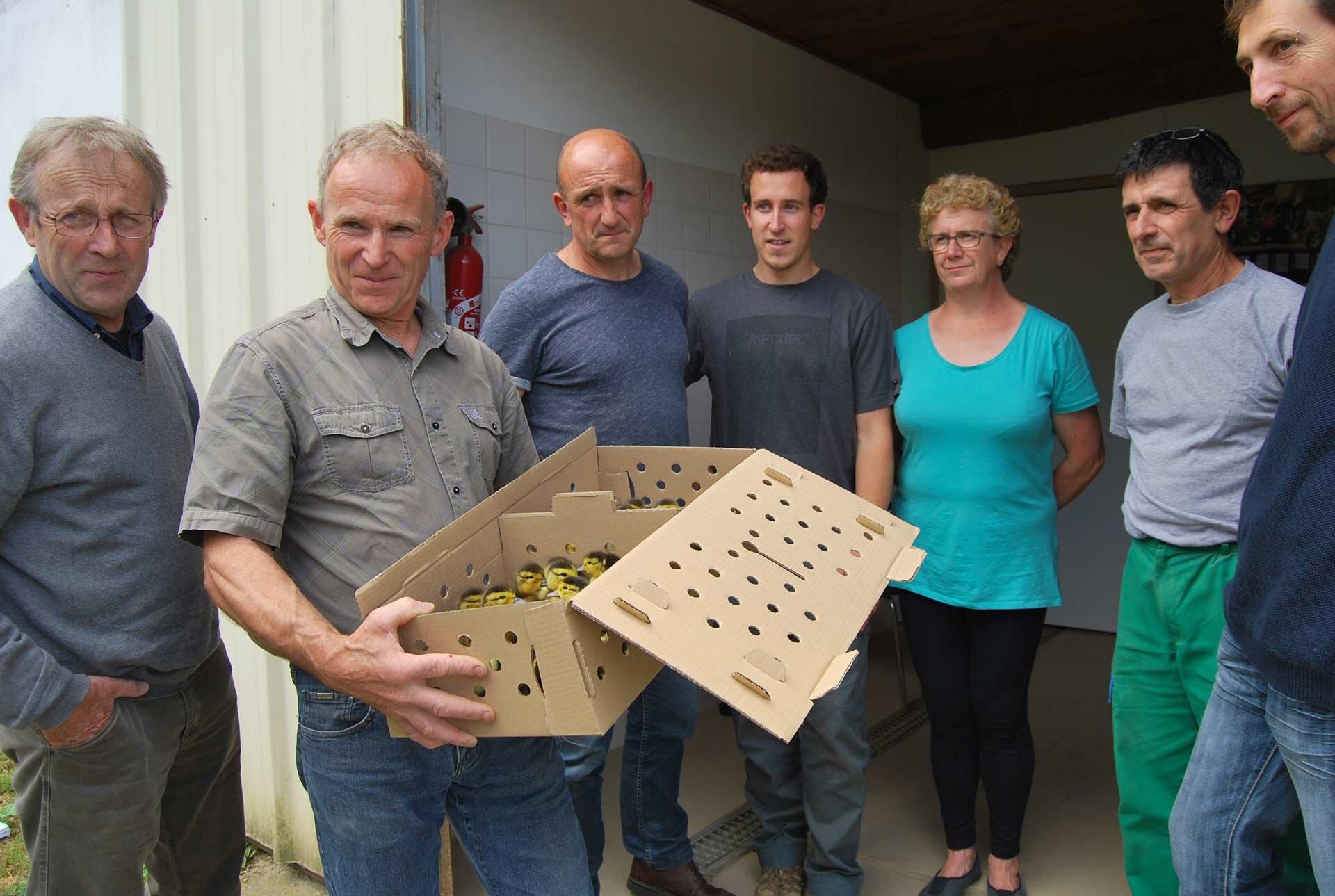 Les militants contre l'élevage industriel des canards, tenant une boîte avec des canetons, au palais de justice.