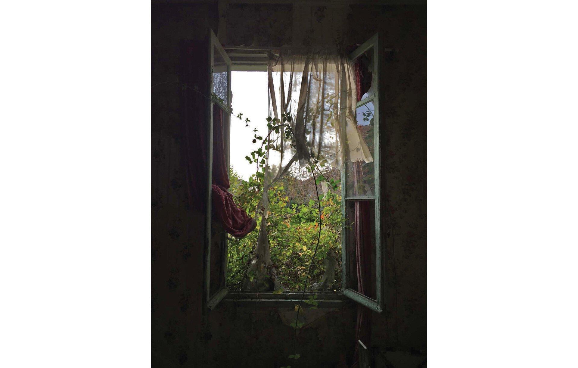 Fenêtre entrouverte qui donne un cadrage naturel.