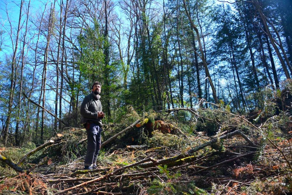 Sylvain, de l'association Faîte et Racines, dans la forêt